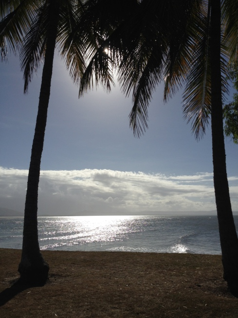 Port Douglas in the late afternoon